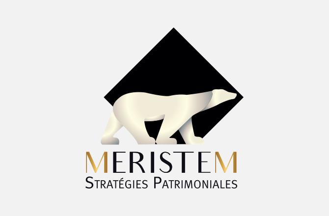 Création de logo pour cabinet de conseil en gestion de patrimoine
